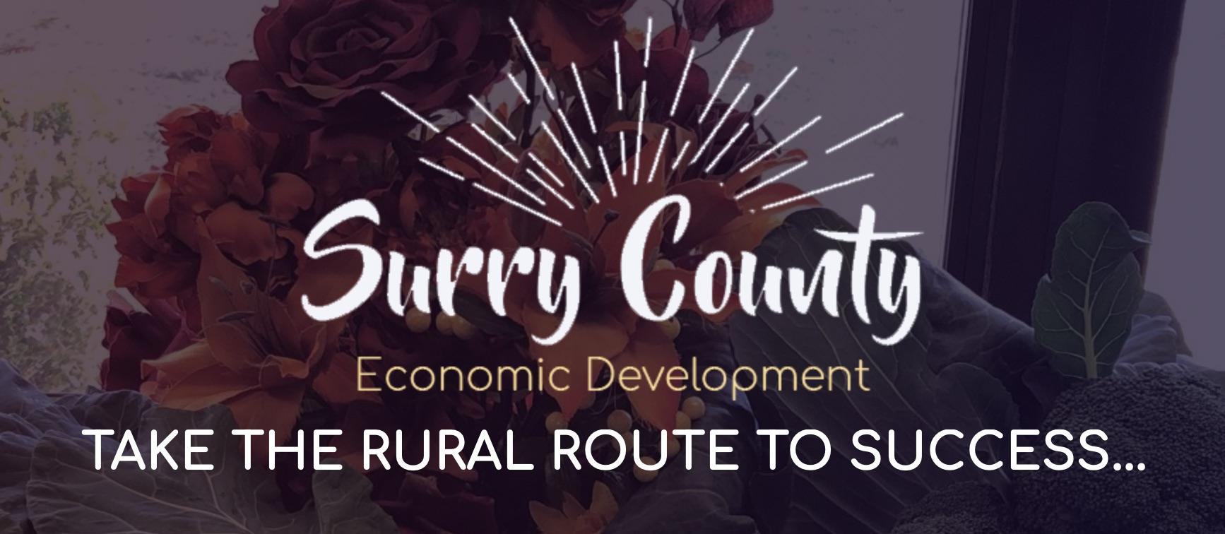 Surry County Virginia Economic Development marketing collateral copywriting Tryna Fitzpatrick
